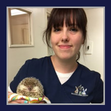 Wantagh Animal Hospital Staff - Jessica P.