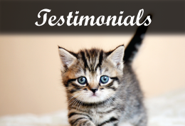 testimonials of wantagh animal hospital