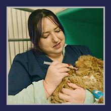 Wantagh Animal Hospital Staff - Emily E.